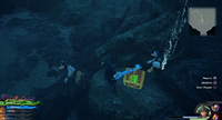 The High Seas / Undersea Cavern: In the cavern where the Lightning Angler was fought.