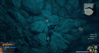 The High Seas / Sandbar Isle: On the island, in the emblem cave in the pool of water.
